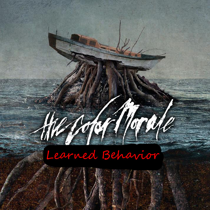 The Color Morale - Learned Behavior
