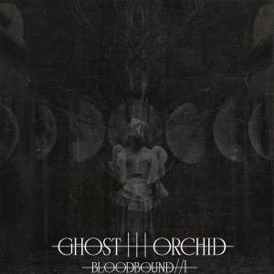 ghostorchid